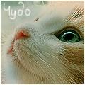 Профиль Lyela