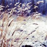 Профиль Время_Зимы