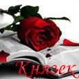 Профиль Князек
