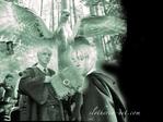 Профиль -Malfoy_Draco-