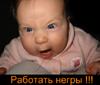 Профиль Фуфел_Абузырович