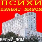 Профиль Белый_Дом