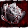 Профиль Blood_Rose666