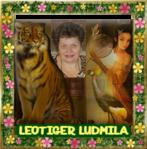 Профиль LEOTIGER