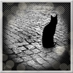 Профиль черная_кошка_в_душе