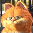 Профиль Wily_cat