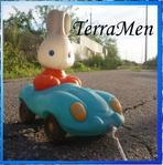 Профиль TerraMEN
