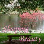 Профиль Sleeping_Beauty